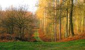 Randonnée A pied VILLERS-COTTERETS - le GR11A  dans la Forêt de Retz  - Photo 27