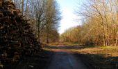 Trail Walk RETHEUIL - en forêt de Retz_76_dans les forêts de Retz et de Compiègne - Photo 81