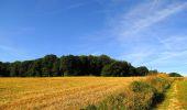 Randonnée Marche HARAMONT - en forêt de Retz_79_08_2019_vers Taillefontaine et Retheuil par les lisières - Photo 31