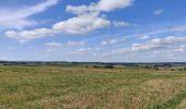 Randonnée Marche Sainte-Ode - saint ode - Photo 1