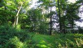 Randonnée Marche HARAMONT - en forêt de Retz_79_08_2019_vers Taillefontaine et Retheuil par les lisières - Photo 25