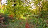 Randonnée Marche SAINT-JEAN-AUX-BOIS - en forêt de Compiègne_32_11_2019_les Tournantes de la Muette et sous la Tête Saint-Jean - Photo 178