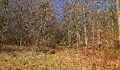 Trail Walk PIERREFONDS - en forêt de Compiègne_24_Tournantes sur le Voliard et sur la Fortelle_chaussée Brunehaut - Photo 95