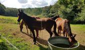 Randonnée Marche LOCMELAR - ballade 270719 - Photo 15
