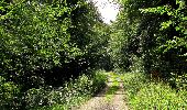 Randonnée Marche HARAMONT - en forêt de Retz_79_08_2019_vers Taillefontaine et Retheuil par les lisières - Photo 66