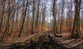 Trail Walk PIERREFONDS - en forêt de Compiègne_24_Tournantes sur le Voliard et sur la Fortelle_chaussée Brunehaut - Photo 51