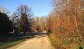 Trail Walk SAINT-JEAN-AUX-BOIS - en forêt de Compiègne_33_12_2019_les Tournantes de l'étang Saint-Jean et des Prés Saint-Jean - Photo 28