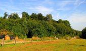 Randonnée Marche HARAMONT - en forêt de Retz_79_08_2019_vers Taillefontaine et Retheuil par les lisières - Photo 34