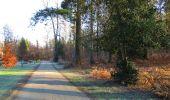 Trail Walk SAINT-JEAN-AUX-BOIS - en forêt de Compiègne_33_12_2019_les Tournantes de l'étang Saint-Jean et des Prés Saint-Jean - Photo 34