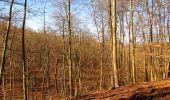 Trail Walk PIERREFONDS - en forêt de Compiègne_24_Tournantes sur le Voliard et sur la Fortelle_chaussée Brunehaut - Photo 47