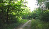 Randonnée Marche LACROIX-SAINT-OUEN - en forêt de Compiègne_35_la Croix Saint-Sauveur_le Ru du Goderu - Photo 76