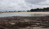 Randonnée Marche MESQUER - la pointe de Merquel à marée basse - Photo 17