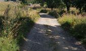 Trail Walk NASBINALS - autour de la cascade du Deroc - Photo 7