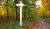 Trail Walk SAINT-JEAN-AUX-BOIS - en forêt de Compiègne_19_le Puits d'Antin_les Mares St-Louis_La Muette - Photo 131