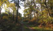 Randonnée Marche SAINT-JEAN-AUX-BOIS - en forêt de Compiègne_19_le Puits d'Antin_les Mares St-Louis_La Muette - Photo 28