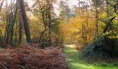 Trail Walk SAINT-JEAN-AUX-BOIS - en forêt de Compiègne_19_le Puits d'Antin_les Mares St-Louis_La Muette - Photo 168