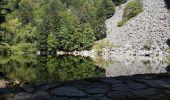 Trail Walk METZERAL - Steinabruck - Le Hohneck et ses 3 lacs Fischboedle, Altenweiher et Schiessrothried - Photo 11