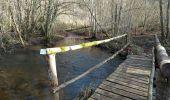 Trail Walk ECROMAGNY - 16-02-20 Ecromagny : circuit Epoissets + étangs de la Chaussée - Photo 4