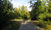 Randonnée Marche SAINT-JEAN-AUX-BOIS - en forêt de Compiègne_2_ruines gallo-romaines de Champlieu_les Petits Monts - Photo 167