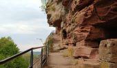 Randonnée Marche PHILIPPSBOURG - chateaux falckenstein - Waldeck - Photo 7