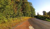 Trail Walk DAMPLEUX - en forêt de Retz_80_sur la Route Tortue et la Route Droite - Photo 89