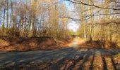 Trail Walk PIERREFONDS - en forêt de Compiègne_24_Tournantes sur le Voliard et sur la Fortelle_chaussée Brunehaut - Photo 72