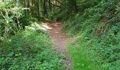 Randonnée Marche LOCMELAR - ballade 270719 - Photo 3