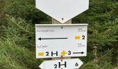 Randonnée Marche La Roche-en-Ardenne - Ramee  - Photo 3