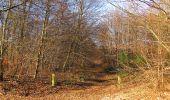 Trail On foot VIEUX-MOULIN - en forêt de Compiègne_23_la Grotte des Ramoneurs_le Mont Berny - Photo 95