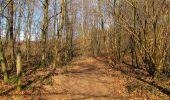 Trail On foot VIEUX-MOULIN - en forêt de Compiègne_23_la Grotte des Ramoneurs_le Mont Berny - Photo 9