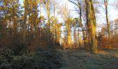 Trail Walk SAINT-JEAN-AUX-BOIS - en forêt de Compiègne_33_12_2019_les Tournantes de l'étang Saint-Jean et des Prés Saint-Jean - Photo 191