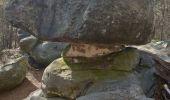 Randonnée Marche FONTAINEBLEAU - Forêt de Fontainebleau tour de Denecourt 21-09-19.ori - Photo 3