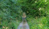 Trail Walk DAMPLEUX - en forêt de Retz_80_sur la Route Tortue et la Route Droite - Photo 165