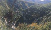 Trail Walk CHATEAUNEUF-DE-CHABRE - Gorges de la Méouge retour par côte chaude - Photo 3