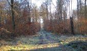 Trail Walk SAINT-JEAN-AUX-BOIS - en forêt de Compiègne_33_12_2019_les Tournantes de l'étang Saint-Jean et des Prés Saint-Jean - Photo 105