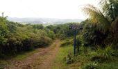 Trail Walk RIVIERE-SALEE - JOUBADIÈRE - MORNE CONSTANT - PAGERIE - Photo 43