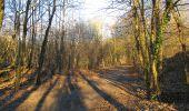 Trail Walk RETHEUIL - en forêt de Retz_76_dans les forêts de Retz et de Compiègne - Photo 12