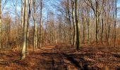Trail Walk PIERREFONDS - en forêt de Compiègne_24_Tournantes sur le Voliard et sur la Fortelle_chaussée Brunehaut - Photo 37