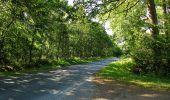 Trail Walk DAMPLEUX - en forêt de Retz_80_sur la Route Tortue et la Route Droite - Photo 230