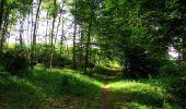 Randonnée Marche SAINT-JEAN-AUX-BOIS - en forêt de Compiègne_6_les Grands Monts_la route tournante sur la tête St-Jean - Photo 180