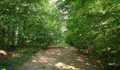 Randonnée Marche LONGPONT - en foret de Retz_ 41_Longpont_Vertes Feuilles_AR - Photo 120