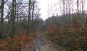 Trail On foot VIEUX-MOULIN - en forêt de Compiègne_23_la Grotte des Ramoneurs_le Mont Berny - Photo 120