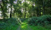 Randonnée Marche HARAMONT - en forêt de Retz_79_08_2019_vers Taillefontaine et Retheuil par les lisières - Photo 22