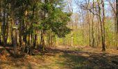 Randonnée Marche LONGPONT - en forêt de Retz_77_Longpont_Puiseux en Retz_AR - Photo 48