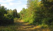 Randonnée Marche LACROIX-SAINT-OUEN - en forêt de Compiègne_35_la Croix Saint-Sauveur_le Ru du Goderu - Photo 62