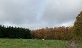 Randonnée Marche Marchin - Grand Marchin louis - Photo 16