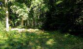 Trail Walk DAMPLEUX - en forêt de Retz_80_sur la Route Tortue et la Route Droite - Photo 217