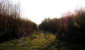 Randonnée Marche LONGPONT - en forêt de Retz_77_Longpont_Puiseux en Retz_AR - Photo 148