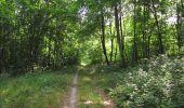 Randonnée Marche SAINT-JEAN-AUX-BOIS - en forêt de Compiègne_2_ruines gallo-romaines de Champlieu_les Petits Monts - Photo 135