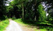 Randonnée Marche HARAMONT - en forêt de Retz_79_08_2019_vers Taillefontaine et Retheuil par les lisières - Photo 65